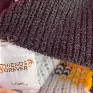 Friends Forever Other - Friends Forever Halloween dog sweater